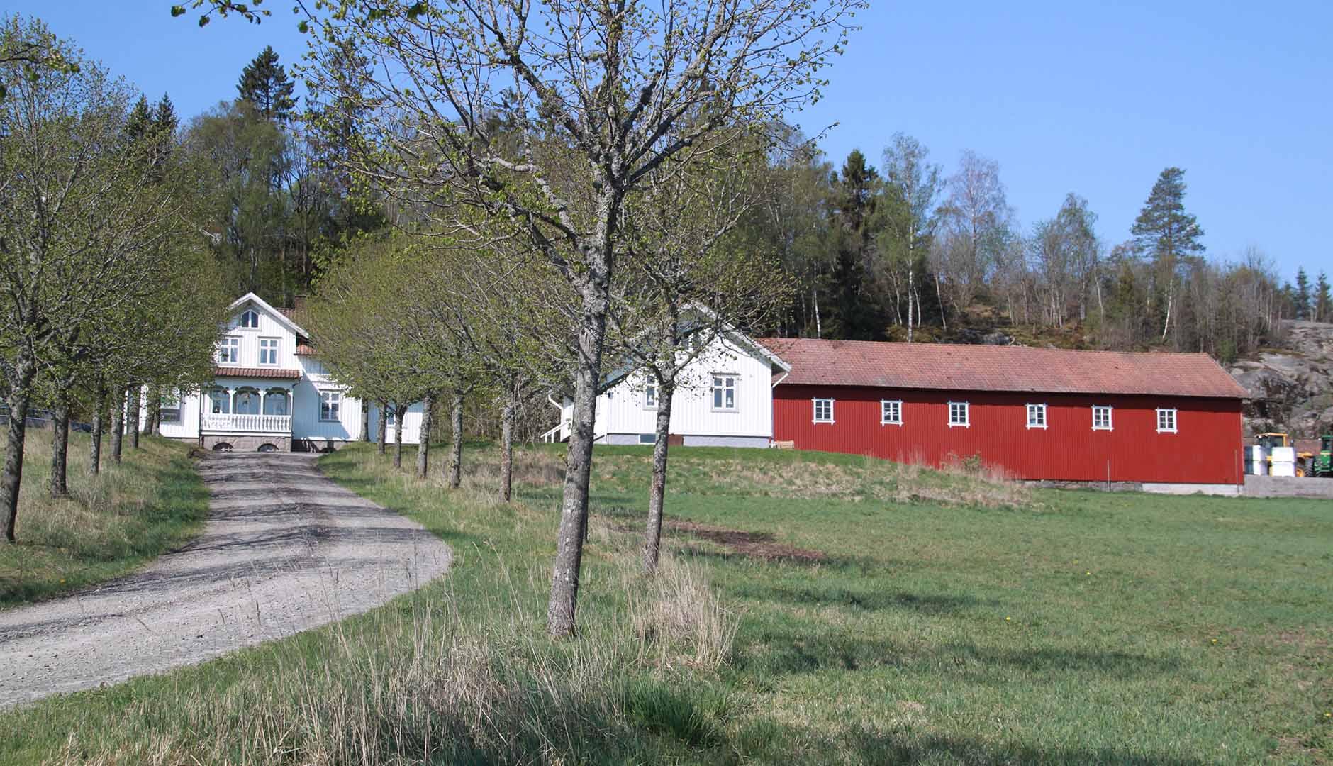 Stora Bränna gård där David Ivarsson bedriver verksamhet med stöttning av Business Region Göteborg